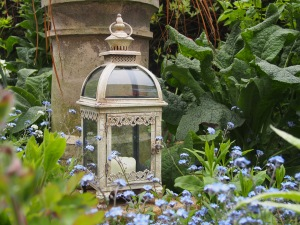 Lantern by Pastel Lane