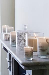 Core Plus Candles