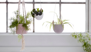 Ceramic Hanging Planters_Out There Interiors_1