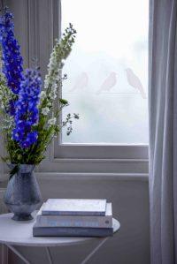 Window Film Company - Window Detail Frostbrite from £25 copy