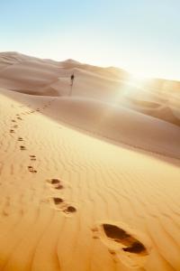 Desert Hiker